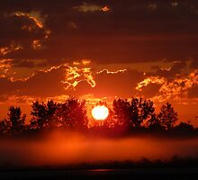 Flaming Horses over the Foggy Sunrise  by DanByTheSea