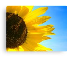 Flower in the sun Canvas Print