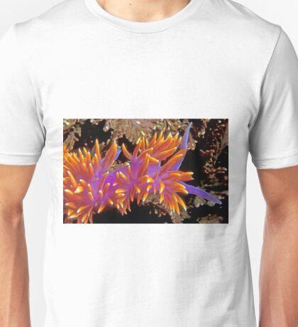 Spanish Shawl. (Flabellina iodinea) Santa Cruz Island, CA Unisex T-Shirt