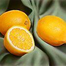 Lemon Still-Life by jsalozzo