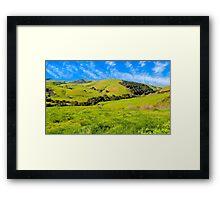 Green Meadow, Santa Ynez valley, CA Framed Print