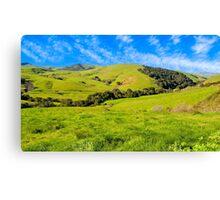 Green Meadow, Santa Ynez valley, CA Canvas Print