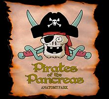 Pirates of the Pancreas by jetfire852