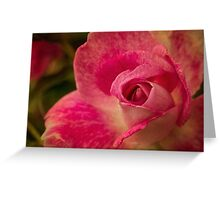 Painterly pink Greeting Card
