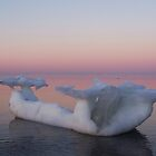 Viking Iceberg Ship by DanByTheSea