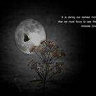 Dark Moment by Judi Taylor