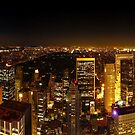 Night Central Park from the Rockefeller in New York by Zoltán Duray