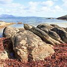 Red Rocks Trousers Point Flinders Island by Andrew  Makowiecki