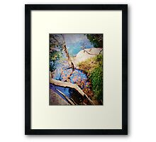 iPhoneography: Nature's palette Framed Print