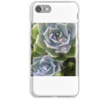 Succulents in My Garden iPhone Case/Skin