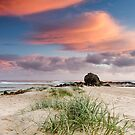 Cool Currumbin Grass by Simon Baker