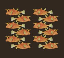 many fish [zip split) by dennis william gaylor
