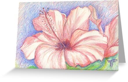 hibiscus by terezadelpilar~ art & architecture