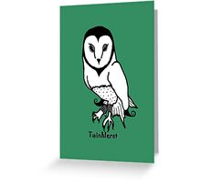 The Watchful Owlyn - 2013 Greeting Card