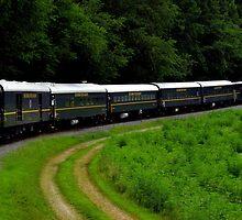 Blue Ridge Scenic Railway ~ Part Two by artisandelimage