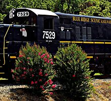Blue Ridge Scenic Railway ~ Part Three by artisandelimage