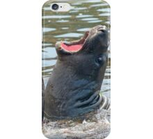 Confrontation / Conflict. Elephant Seals Reserve, San Simeon, CA iPhone Case/Skin