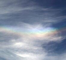 Rainbow Nation by John Gaffen