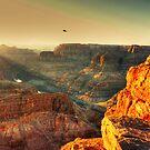 Flying high by Chris Brunton