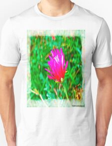 Color flower T-Shirt