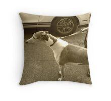11_50 Throw Pillow