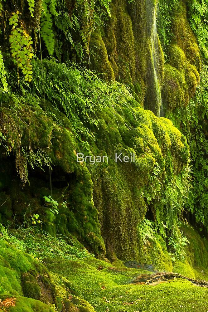 Waterfall in Green by Bryan  Keil
