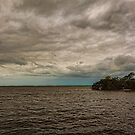 Chokoloskee Bay 3 by Carson Wilcox