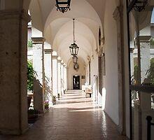 Villa d'Este Arcade by Claire Dimond