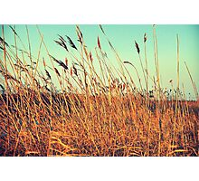 a cool fall day at the beach Photographic Print