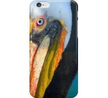 Brown Pelican iPhone Case/Skin