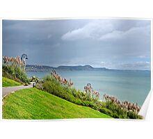Pampas Grass ~ Lyme Regis  Poster
