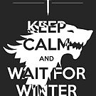 Keep Calm and Wait for Winter by Alessandro Ionni