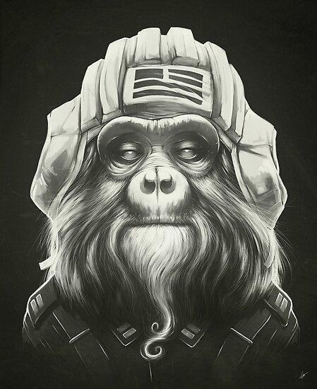 Commander by Lukas Brezak
