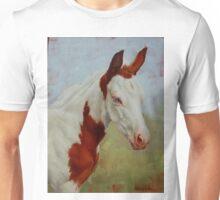 Pretty Baby-Paint Foal Portrait Unisex T-Shirt