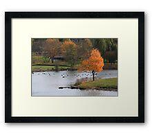 A Perfect Fall Frame Framed Print