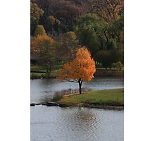 Autumn at its Best Photographic Print