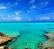 Bermudian Panorama by odessit40