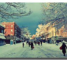 Snowy Day in Brooklyn by odessit40