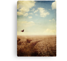 Fly Free Canvas Print