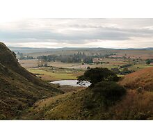 Champagne Valley Photographic Print