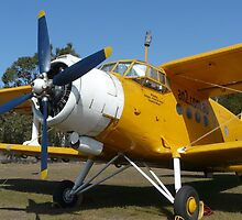 A Very Big Bi-Plane by stevealder