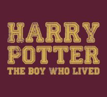 Harry Potter: The Boy Who Lived by Jessica Morgan