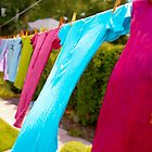 ....cheery clothes on a line.......... by Jane Anastasia Studio