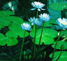 Blue Water Lilies by Vac1