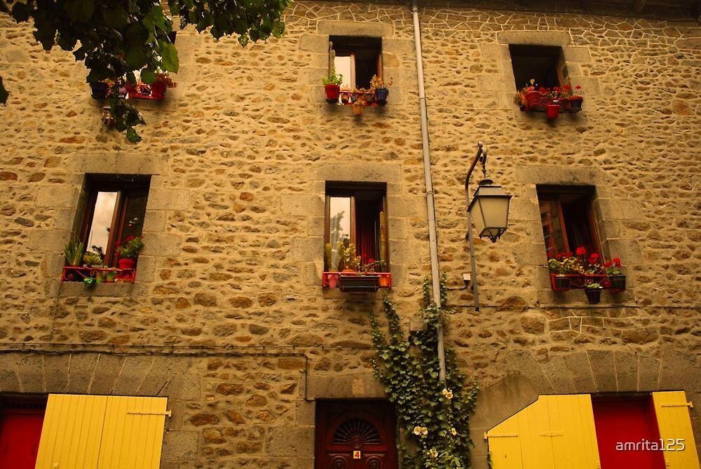 Wall and windows by amrita125