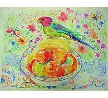 Parakeet with Oranges Photographic Print