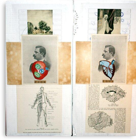 LA MEMORIA Y LA HOZ (MEMORY AND SICKLE) by Alvaro Sánchez