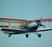 Antonov An-2 by mike  jordan.