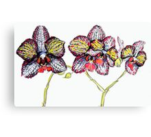 Ink Orchid Canvas Print