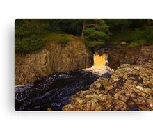 Low Force, River Tees, Upper Teesdale North England Canvas Print